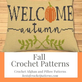 Fall Crochet Patterns - Crochet Blanket and Pillow Patterns