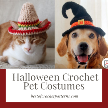 Crochet Halloween Pet Costume