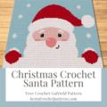 Christmas Crochet Santa Pattern - FREE Christmas Pattern